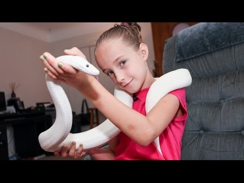 9 Year Old Snake Handler Krista Guarino