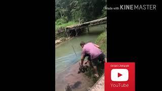 أنقاذ كلب من ثعبان ضخم جدا