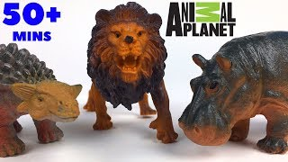 COMPILATION WITH ANIMAL PLANET TOYS LEARN DINOSAURS SAFARI WILD LIFE OCEAN CREATURES & FARM ANIMALS