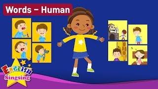 "Kids vocabulary Theme ""Human"" - Action verbs, Body, Feel - Words Theme collection - Learn English"