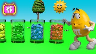 Learn colors and cook Magic colors - 3D Cartoons for children Video for kids