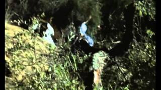 (ISPR) Pakistan Army Telefilm 'Glorious Resolve' Part-2