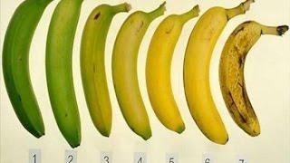 هل تعلم ما هي أفضل موزة بين هذه السبعة لصحتك؟