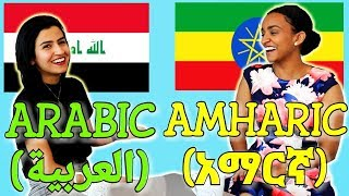 Similarities Between Arabic and Amharic