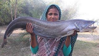 Bengali Boal Fish Kosha Recipe Delicious Fish Vuna Cooking Big Catfish Gravy Curry For Orphan Kids
