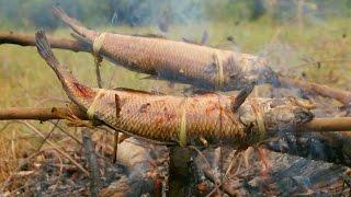 ตีหม้อฯEp37วิดบึงกินปลาสดๆ# ตอนที่2 รังสรรค์เมนูปลาสดๆริมบึง
