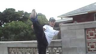 Developing Fast Kicks
