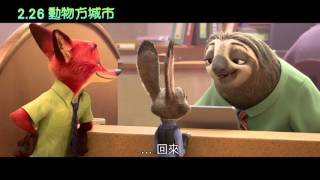【動物方城市】官方中文版預告 2月26日(五)都市叢林歡迎您