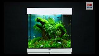 Aquarium einrichten Juwel Aquarium Lido 120 Einrichtungsbeispiel / Tutorial