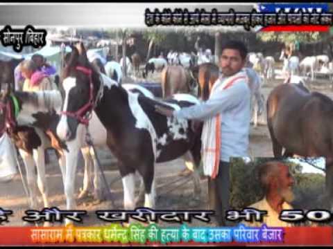 Sonpur Bihar Mela