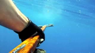 Mahi spearfishing with Riffe euro-X