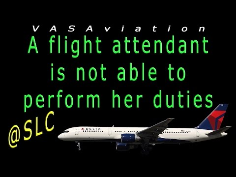 watch [RARE ATC] Delta Flight Attendants FIGHTING on board!! :O