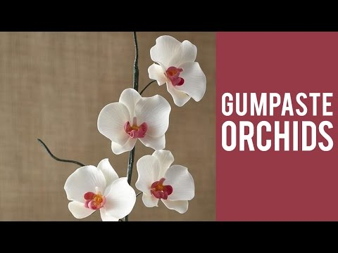 How to Make a Gum Paste Orchid