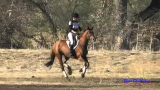 159XC Azure Siraco on Bold n Royal JR Novice Cross Country Twin Rivers Ranch Sept 2015