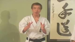 Hirokazu Kanazawa · Shotokan Karate Do · Kumite