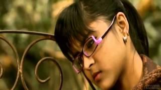 Shona Pakhi 5362