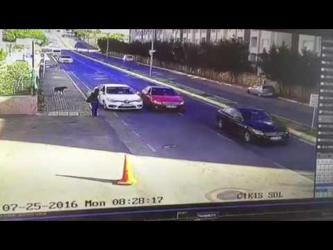 Trafik kazası yenişehir