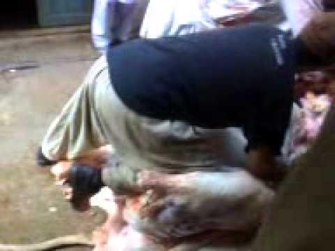 Xxx Mp4 Peshawar 3gp 3gp Sex