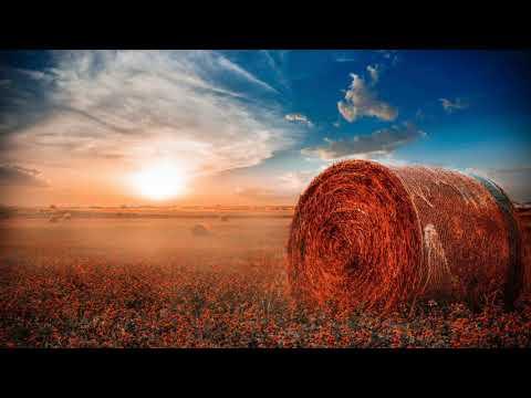 Melodic Progressive House mix Vol 55 Fields Of Dreams