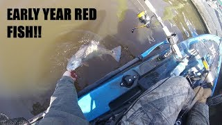 First Red fish of 2019! - Rudee inlet Red Drum
