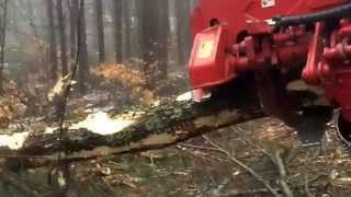 Logging photoes