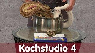 Reptil TV - Folge 108 - Kochstudio 4 - Allele