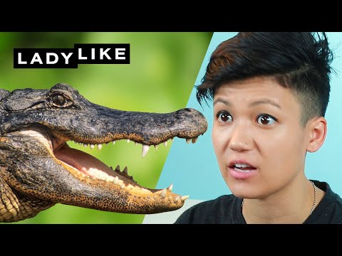 We Overcame Our Fear Of Alligators At A Gator Ranch • Ladylike