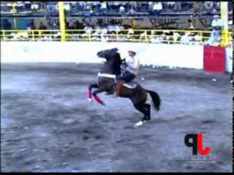 JARIPEO DE FIESTA CAÑADA 2010 Y ADEMAS CONCURSO DE CABALLOS BAILARINES