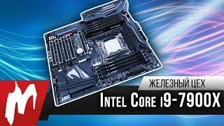 Intel Core i9 против всех — Первые тесты 10-ядерника нового поколения – Железный цех — Игромания