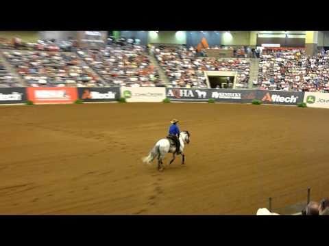 redeas BRASIL na final nos USA do world equestrian games 2010 reining