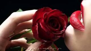 romantik song