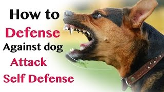 how to defend against dog attack- self defence