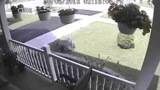 Toronto Homicide Surendra Vaithilingam Security Video #1 Suspects to ID