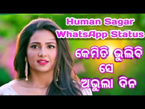 Kemiti Bhulibi Se Abhula Dina | Hrudaya Hina | Human Sagar WhatsApp Status | Odia Sad Song