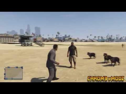 Chr0m3 x MoDz GTA V Chop Attack Dog Squad Online