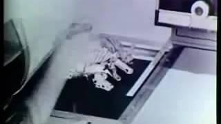 ilk fotokopi makinesi reklamı