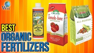10 Best Organic Fertilizers 2017