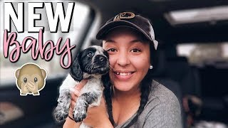 GOING TO GET OUR NEW BABY! | Page Danielle