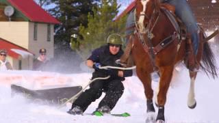 Skijoring in Wisdom, Montana
