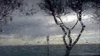 Muharrem Ameti - Ne kete nate me shi