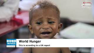 World hunger on rise as 820m at risk, UN report finds
