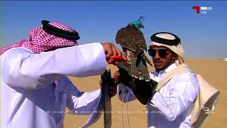 مهرجان مرمي 2018 - بطولة هدد التحدي - فرخ شاهين - مجموعة 4