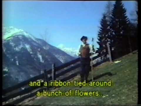 Ans. Miha Dovžana - Zakrivljena Palica