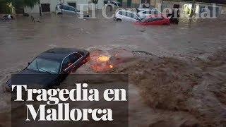 La tormenta perfecta que ha sumido Mallorca en el caos