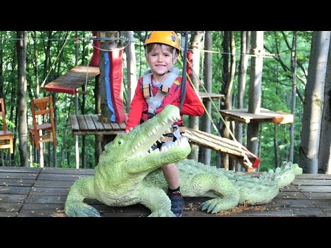 Rope Park Outdoor Fun - Climbing Adventure Family Park - Alligator Riding