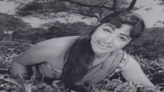 Rangamahal Rahasya Kannada Movie Songs || Oduveya Haduveya || Udayakumar || Bharathi
