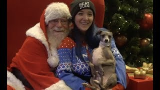 Taking My Dog To Meet Santa