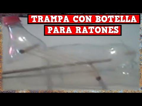 Trampa Para Ratones o Ratas con Botella tutorial completo YMX SUPERVIVENCIA