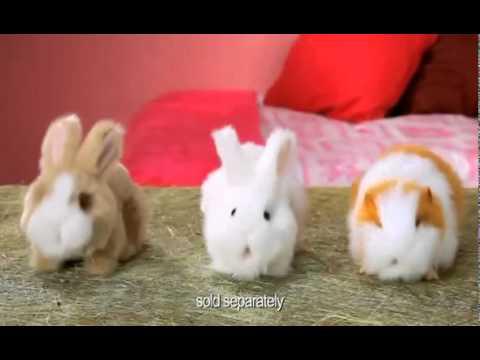 Vivid Пятнышко - Моя морская свинка серии AniMagic 30600 - ayoutube - Open Youtube For Free