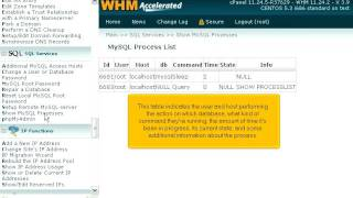 How to see details in WHM about the processes currently in use by MySQL